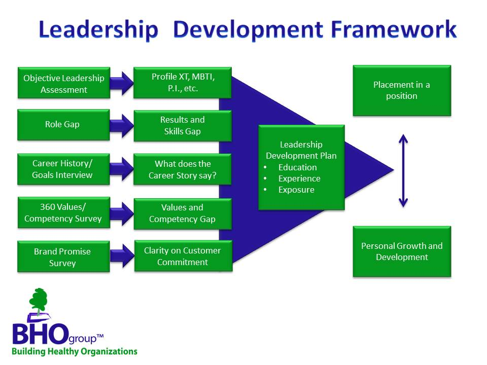 leadership development in organizations pdf